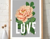Love Typography Print with botanical pink vintage Peony flower. Vintage Inspired original art. housewarming gift wall art home decor - TD103