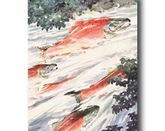 "Salmon Fish Art Print, 1930s Fishing Decor, Vintage Fishing Gifts --- ""Red Salmon"" No. 286"