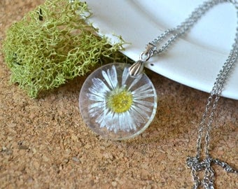 Real Pressed Daisy Flower Resin Pendant