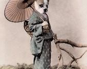 Yoshi - Vintage Bulldog Print - Anthropomorphic - Altered Photo - Bulldog Art - Dog Art Decor - Nursery Decor - Gift Idea - Whimsical Art