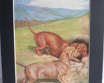 DACHSHUND DOG Vintage Mounted 1958 Edwin Megargee dog plate print Unique Christmas Birthday gift