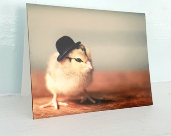 Chicken in A Miniature Derby Hat Chicks in Hats Baby Animal Cards Cute Stationary