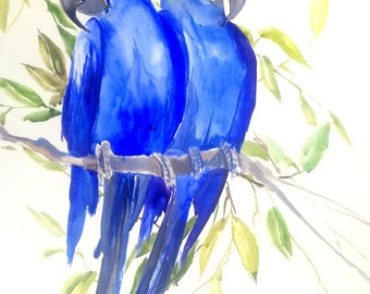 Hyacinth Macaw, parrot art original watercolor painting, 24 X 18 in, red bird art, pets
