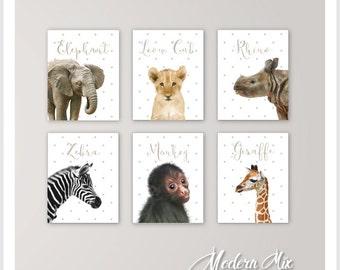Baby Animals Nursery Decor Safari Nursery Art Baby Animal Nursery Prints Baby Elephant Lion Rhino Zebra Monkey Giraffe Set of 6 BA-001