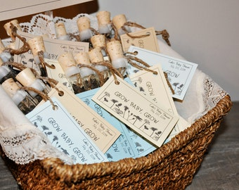 Baby Boy Baby Shower Favors, Corked Wildflower Seed Tubes