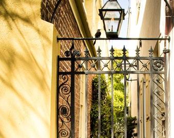 "Charleston Art, Yellow Photography, Charleston Gate, Charleston Print, Southern Decor, Charleston Home, Courtyard - ""Path Inside"""