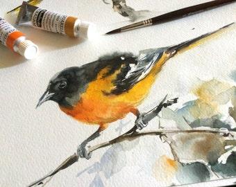 Bird Watercolor Painting, Original Painting, Baltimore Oriole Painting, Yellow Bird Watercolour