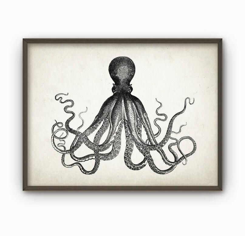 octopus vintage marine wall art poster marine home decor. Black Bedroom Furniture Sets. Home Design Ideas