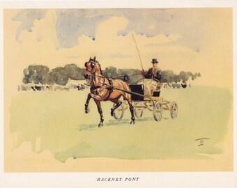 Hackney Pony carriage driving Horse print Lionel Edwards vintage print equine illustration