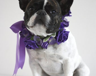 Flower Dog Collar for Weddings - Purple