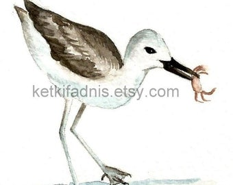 29 March 2015, Day 88  - Crab Plover - Original ACEO watercolor painting