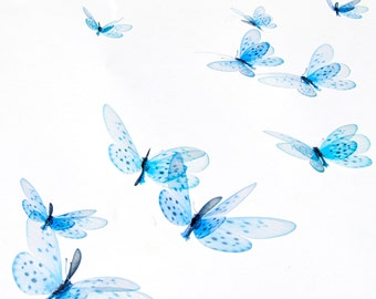 10 3D Realistic Wall Butterflies, transparent. They look natural. For a decor installation in any room of your home or your party.