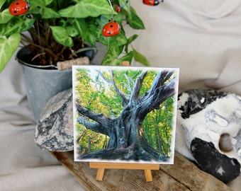 """Photo """"Tree Study Tree crowns 2"""" 13x13 cm with mini easel"""