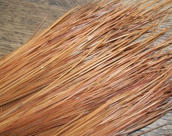 2 lbs 11 to 14 Inch Long Leaf Pine Needles for Pine Needle Basket Making, Basket Weaving Supplies, Basketry Supplies, Crafting Supply