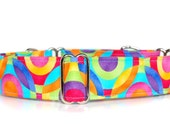 Martingale Dog Collar,,, Picasso,,bright, multi colour Martingale Dog Collar in 1.5 inch or 2 inch width