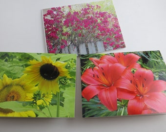 Flower Note Cards, Blank Note Cards, Set of 6 Note Cards, Note Cards, Greeting Cards, Stationery, Note Card Set, Paper Goods