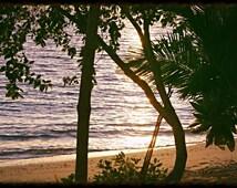 Fiji print, Fiji Photo, Sea print, Sunset print, Sunset photo, Beach print, Beach photo, Sand print, Fiji decor, Home Decor, Fiji art, decor