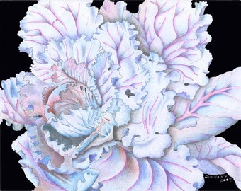 PRINT, RED CABBAGE, Food Art, Kitchen Art, Vegetable Art, From my original prismacolor artwork