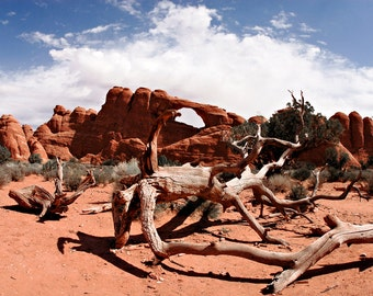 Arches Canyon, Arch, Utah, Desert, Rock Face