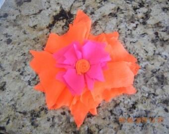 Hot Pink and Hot Orange Star Burst Flower.