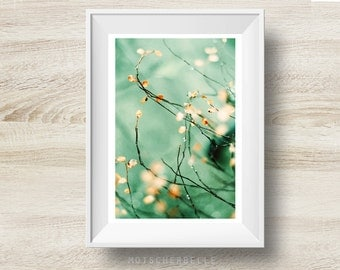 Awakening Spring - Fine art print, photography, nature, flower, abstract, spring, decoration, wall, hand made, high quality, art, photo