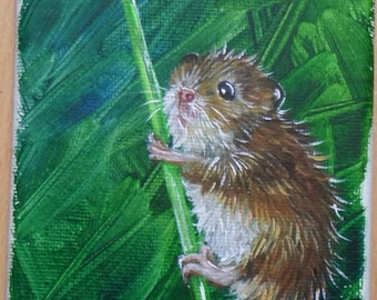 Dandelion Wishes (Milo the Harvest Mouse)