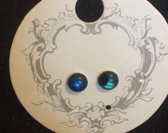Blue Abalone stud earrings