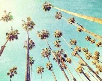 Santa Barbara California Palm Trees California Art Home Decor Sunny Day Teal Sky Beach Trees July Fourth Summer Vacation - Palm Gang Print