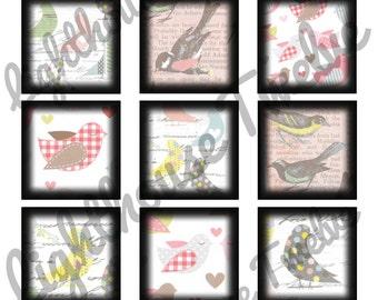 "Bird Scrabble Tile 1"" inch Squares Printable Images Scrapbook Sheet (ss0021)"