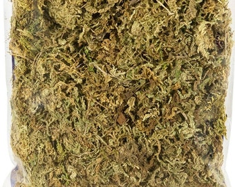 Sphagnum Moss, Dried Preserved Moss 2 Oz- Green Mountain