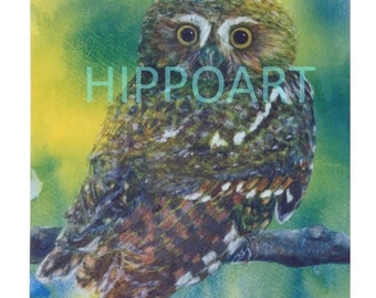 ELF OWL Southwest Greeting Card