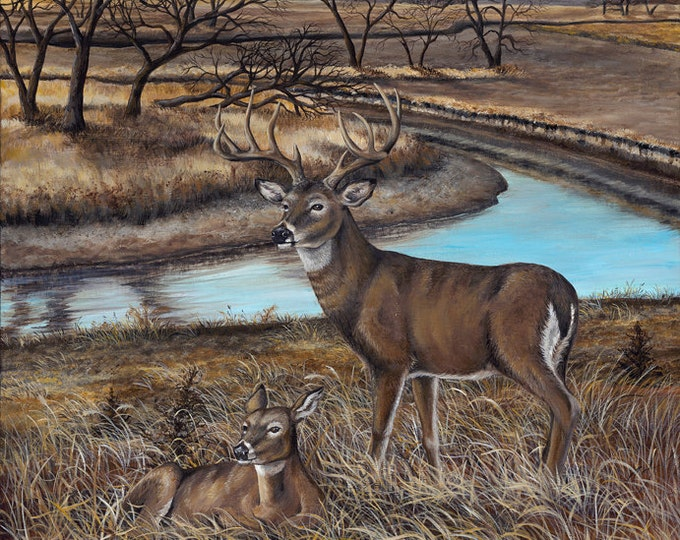 Gift for men White-tailed Deer Print Deer Art Deer Painting Wildlife art Man Cave Art the River's Edge Limited Edition Canvas print
