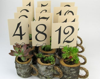12 table number card holders outdoor wedding signs tree slice table numbers wood table number ideas