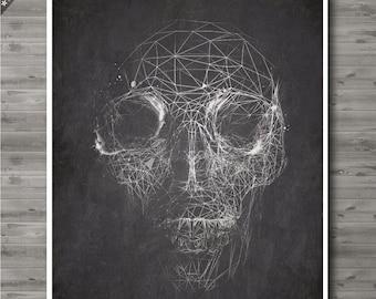 Skull Man Cave Decor : Hog skull wild boar man cave decor rustic ranch