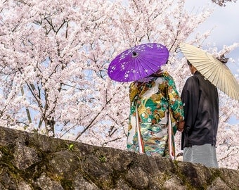 "Kyoto Cherry Trees - ""Blossom Bride"" Fine Art Photograph (9.5"" x 13.25"" Print on 14"" x 18"" Archival Board)"