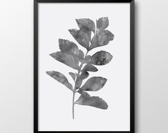 Watercolor leaf print, Gray print, Wall decor, Wall art print, Printable plant, Black and white print 151