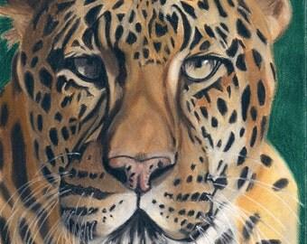 Leopard Art Print, Wildlife Decor, Exotic Animal Art - Fine Art Giclee Print of an Original Pawstel