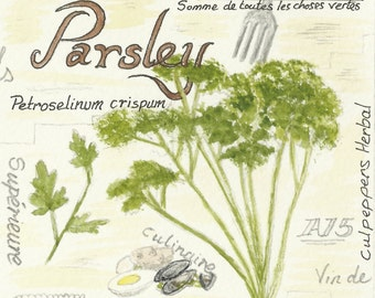 Parsley ,Sage, Rosemary & Thyme
