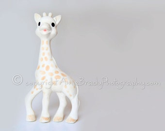 Sophie giraffe toy photography wall art digital download