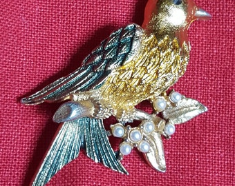 Great Little Bird Broach~Detailed Bird Sitting on Branch of Pearls ~ Special Little Piece for a Great Gift