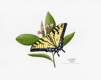 Yellow Swallowtail on Pink - Limited Edition Print