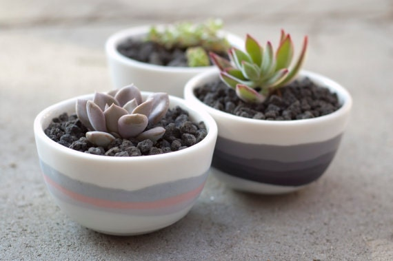 Porcelain Bowls With Striped
