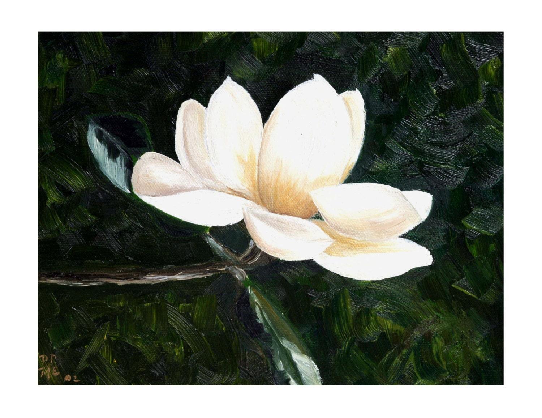 magnolia painting - photo #43