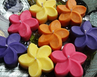 Plumeria Candle All Natural Soy Set of 4