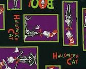 Dr. Seuss Spooktacular Seuss, Halloween Cat in the Hat, yard