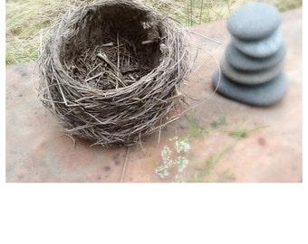 Bird's Nest Wedding Ring Bearer Genuine