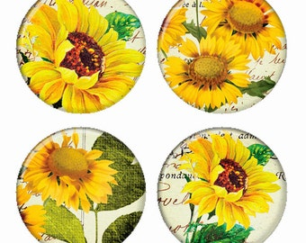 Sunflowers Botanical Flowers Magnets or Pinback Buttons or Flatback Medallions Set of 4