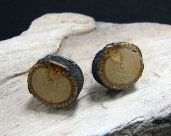Linden - Tilia cordata - Twig Wooden Stud Earrings by Tanja Sova