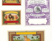 4 different 1900s Fabric Dye Bottle Labels CAT,LION,BIRDS, Etc...