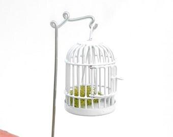 Fairy Garden Cage with Pretty Shepherd's for the Miniature Garden, Fairy Garden or Terrarium, Sweetness, White